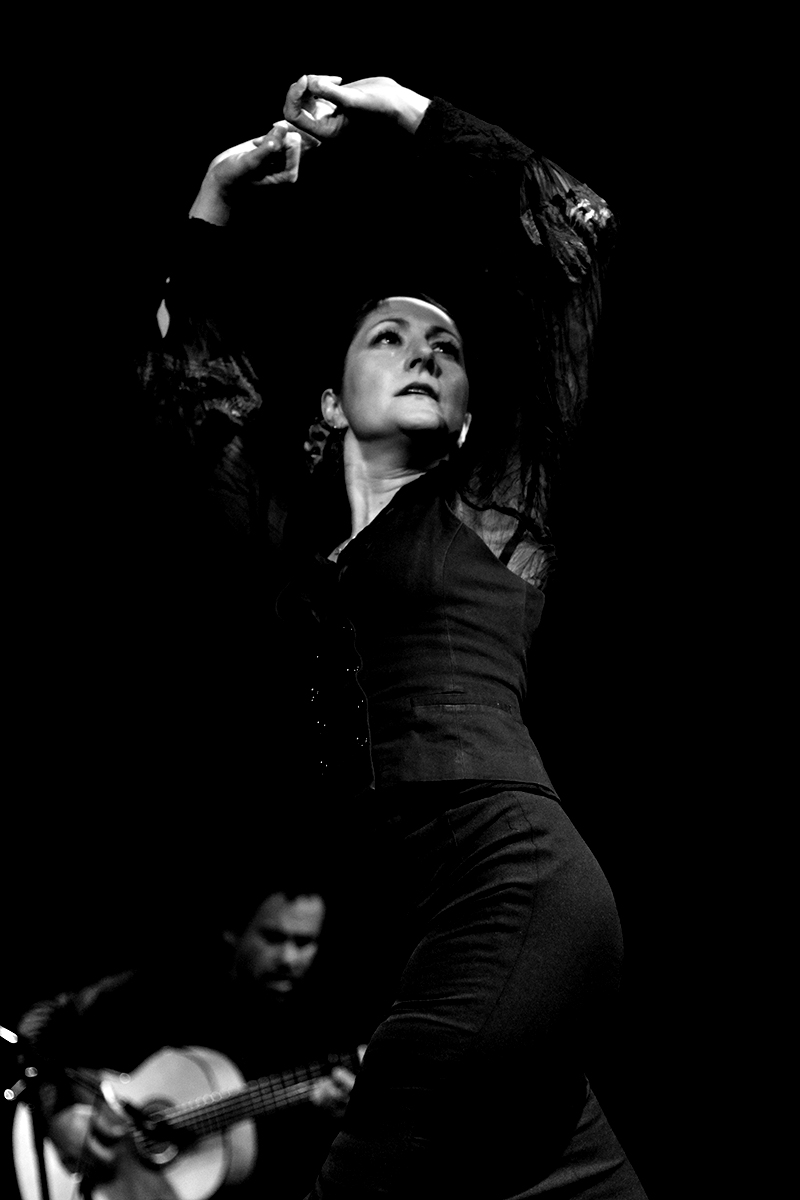 Mozaico-Flamenco-Michelle-2010