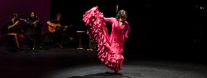 Mozaico-Flamenco-Bata-Dance-Workshop-Kasandra